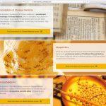 Programma Opleidingen WordPress Webdesign van studio SNH
