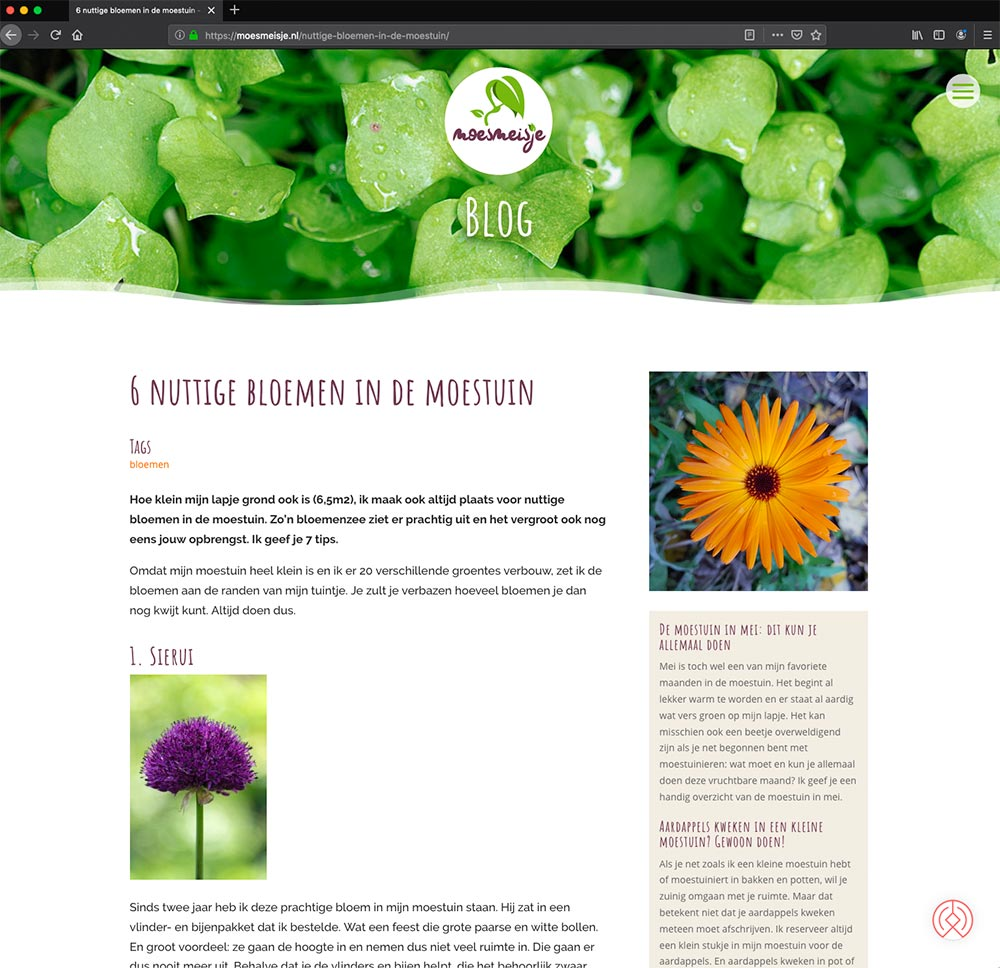 Blog-Moesmeisje---Divi---studio-SH-webdesign